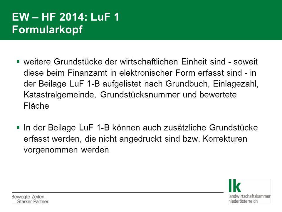 EW – HF 2014: LuF 1 Formularkopf