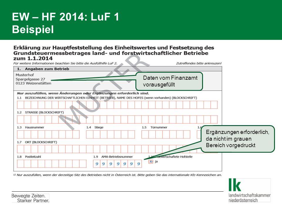EW – HF 2014: LuF 1 Beispiel Daten vom Finanzamt vorausgefüllt