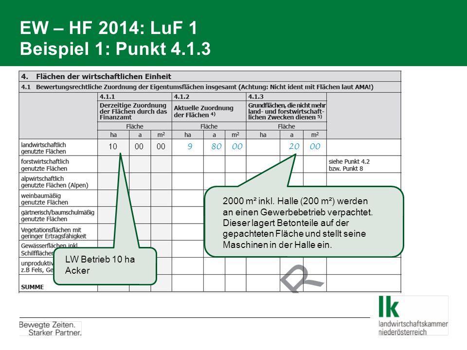 EW – HF 2014: LuF 1 Beispiel 1: Punkt 4.1.3