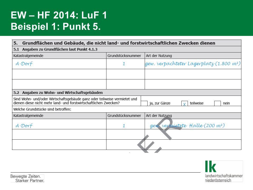 EW – HF 2014: LuF 1 Beispiel 1: Punkt 5.