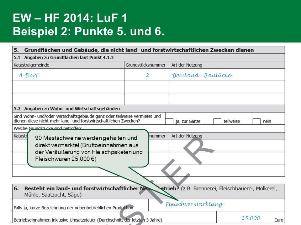 EW – HF 2014: LuF 1 Beispiel 2: Punkte 5. und 6.