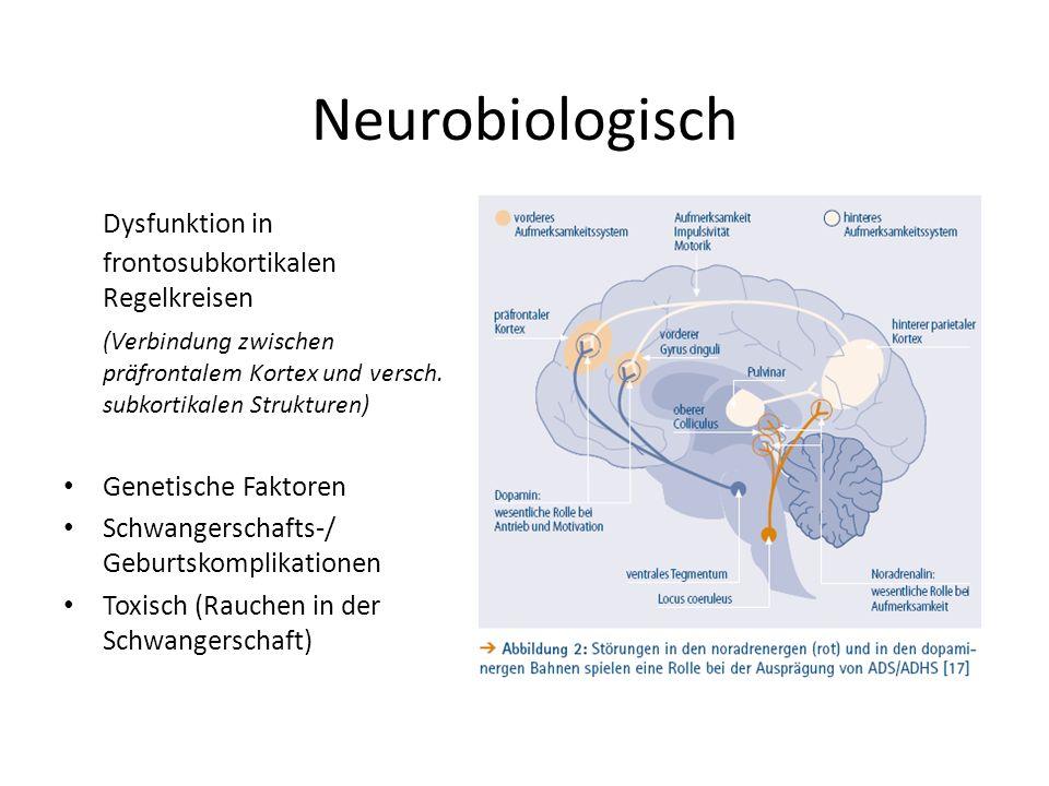 Neurobiologisch Dysfunktion in frontosubkortikalen Regelkreisen