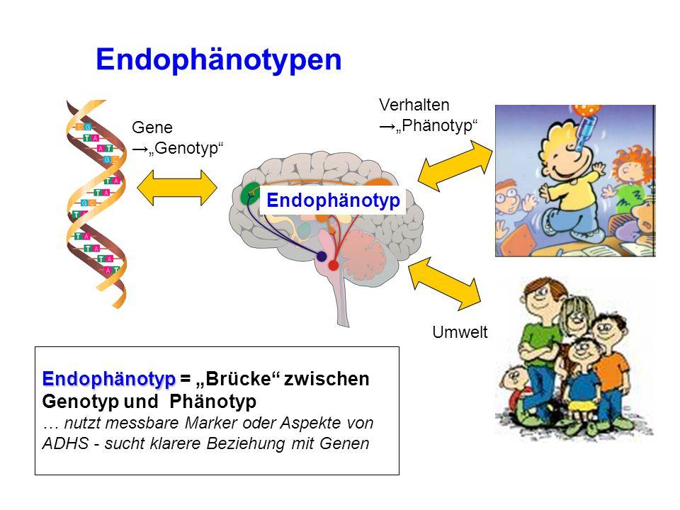 """Endophänotypen Endophänotyp Endophänotyp = """"Brücke zwischen"""