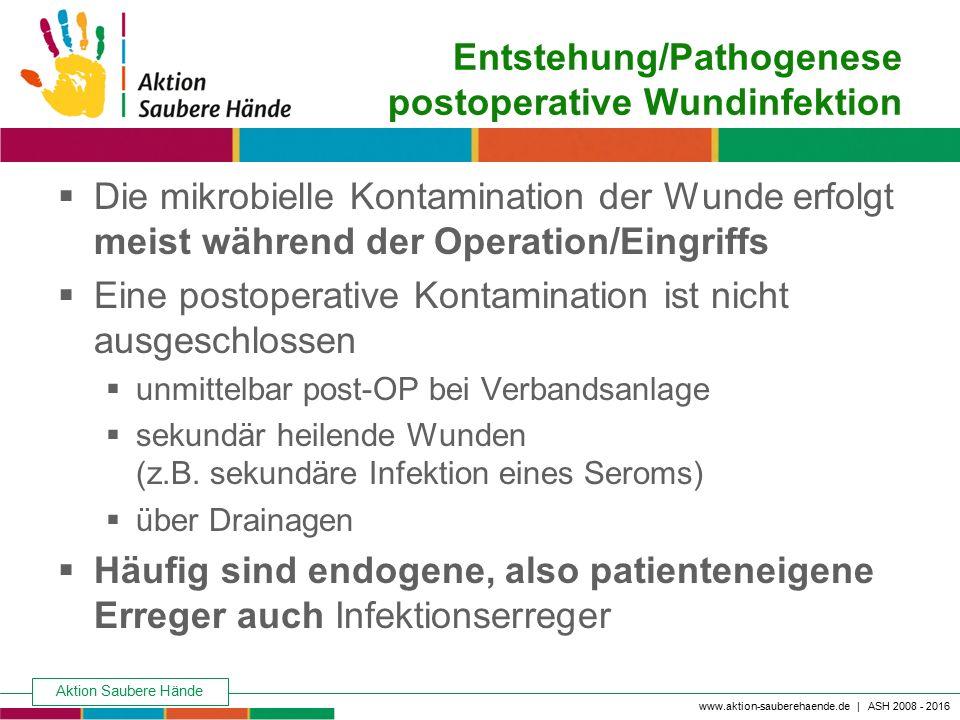 Entstehung/Pathogenese postoperative Wundinfektion