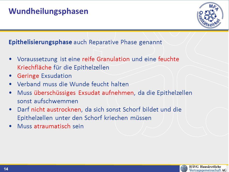 Wundheilungsphasen Epithelisierungsphase auch Reparative Phase genannt