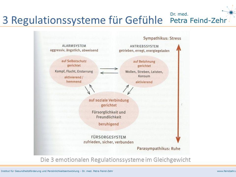 3 Regulationssysteme für Gefühle
