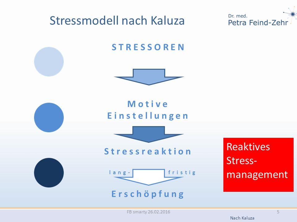 Stressmodell nach Kaluza