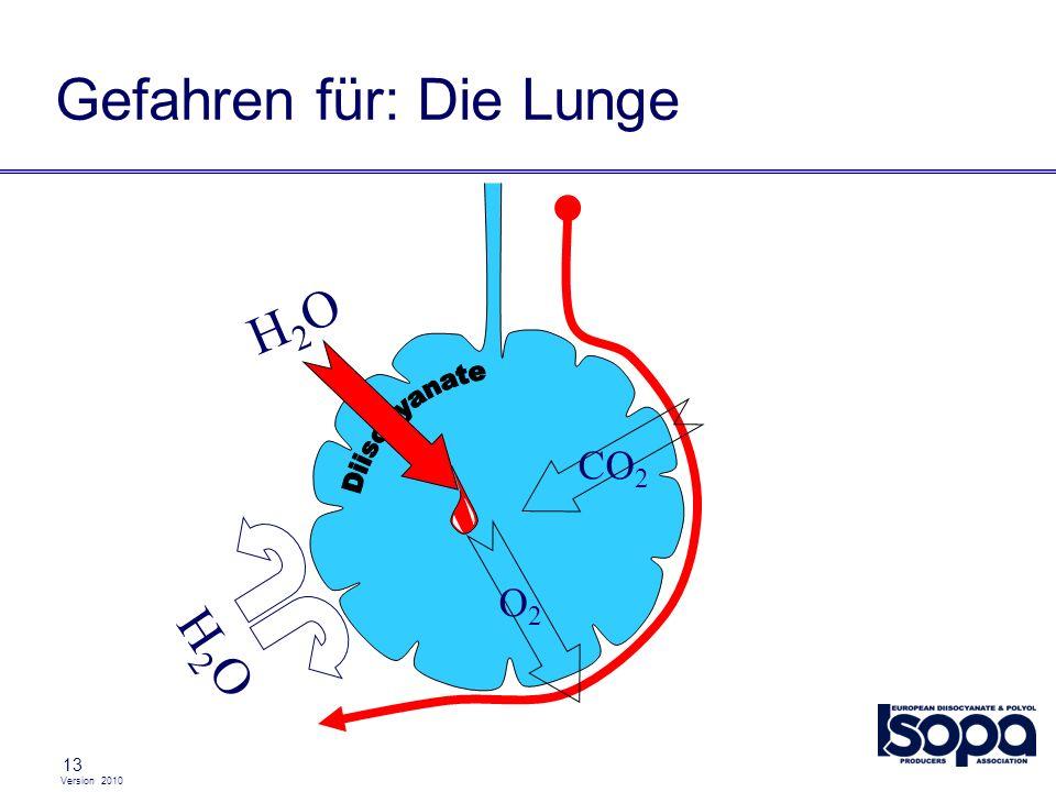 Gefahren für: Die Lunge