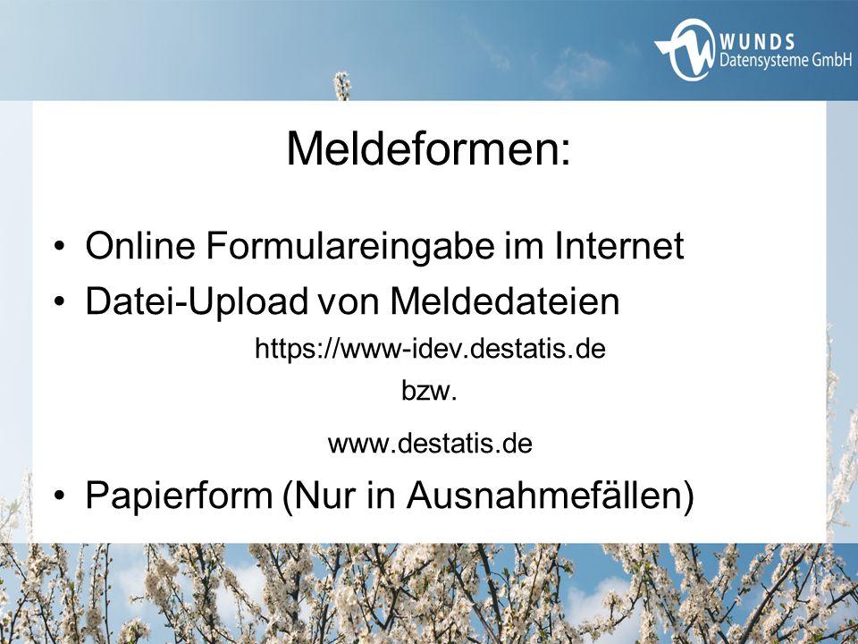 Meldeformen: Online Formulareingabe im Internet