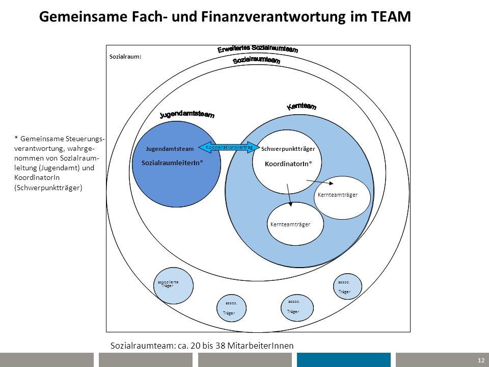 Gemeinsame Fach- und Finanzverantwortung im TEAM