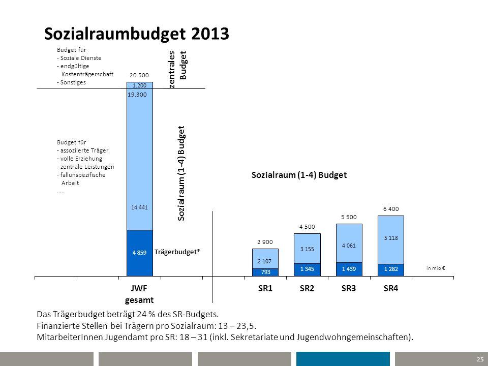 Sozialraumbudget 2013 Das Trägerbudget beträgt 24 % des SR-Budgets.