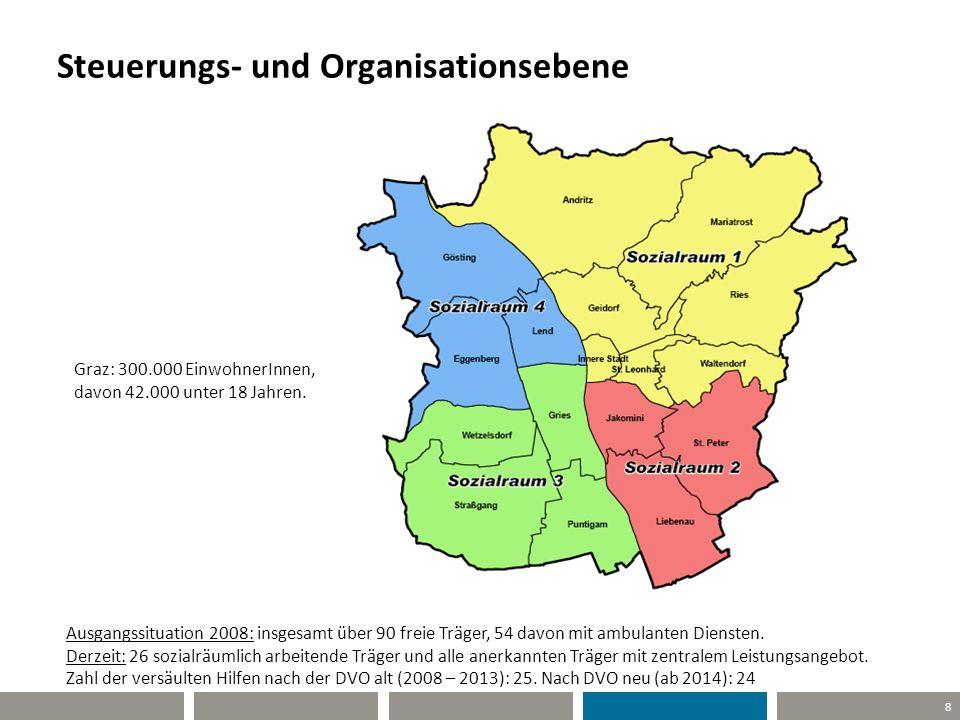 Steuerungs- und Organisationsebene