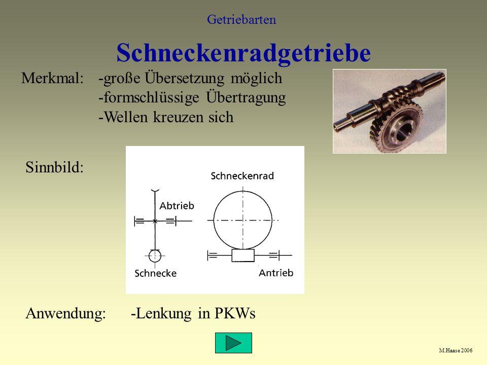 Schneckenradgetriebe