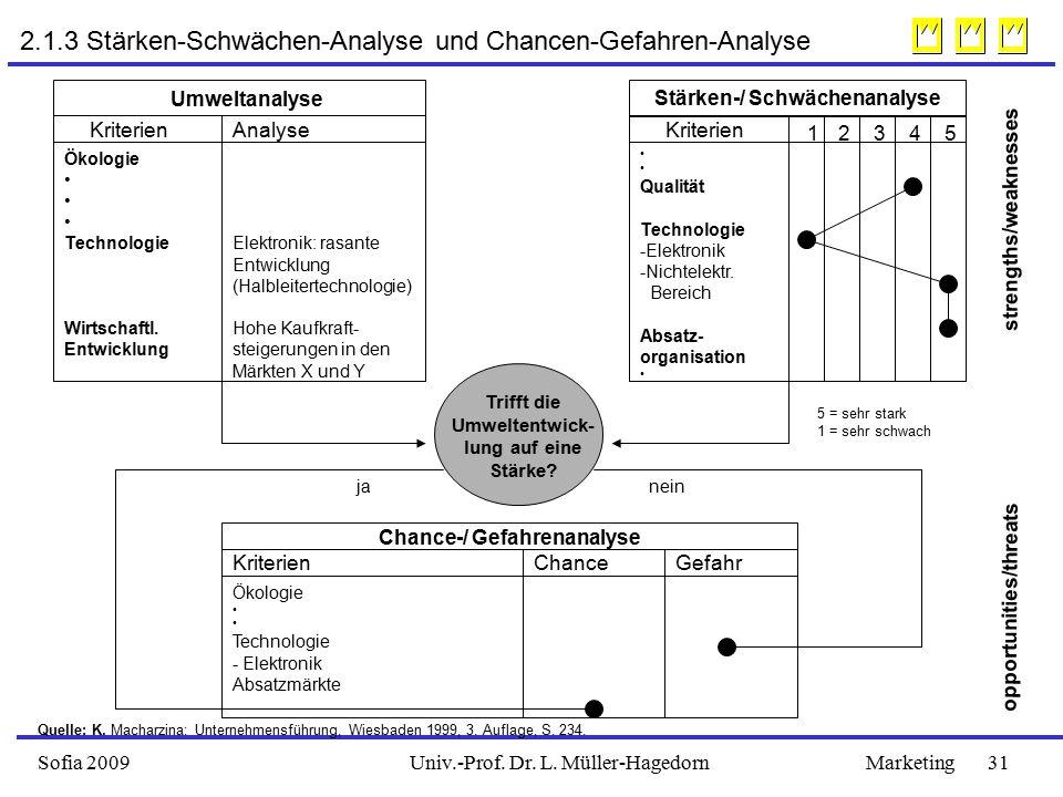 2.1.3 Stärken-Schwächen-Analyse und Chancen-Gefahren-Analyse