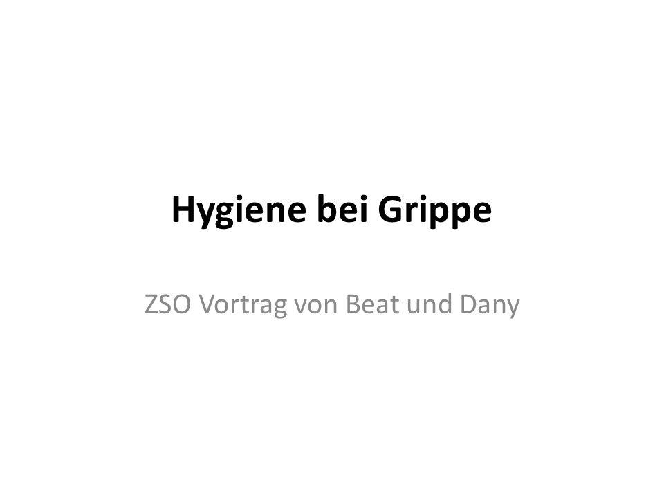 ZSO Vortrag von Beat und Dany