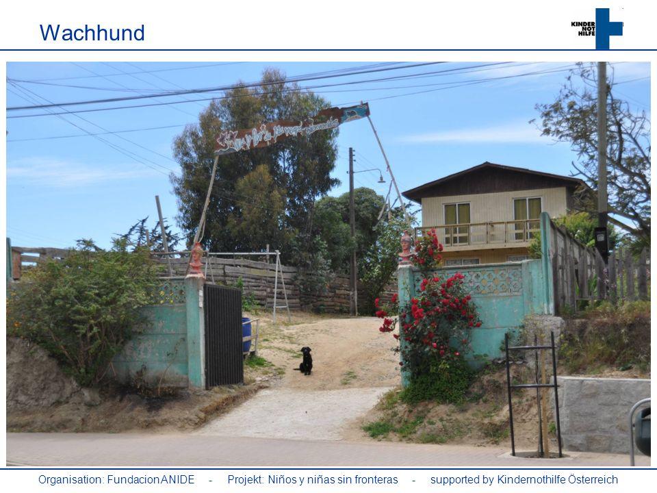 Wachhund Organisation: Fundacion ANIDE - Projekt: Niños y niñas sin fronteras - supported by Kindernothilfe Österreich.