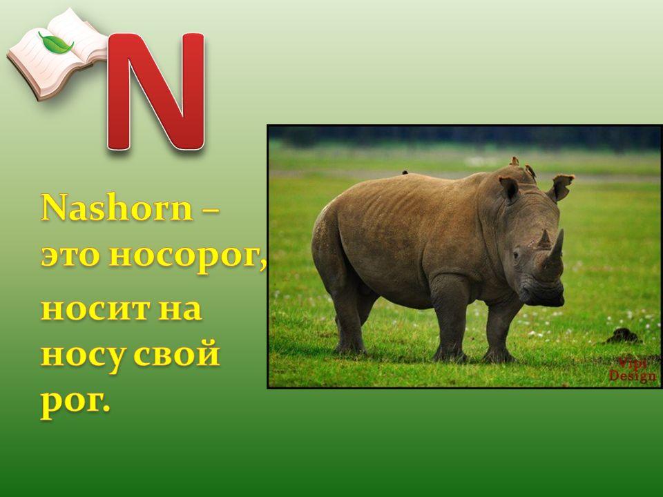 N Nashorn – это носорог, носит на носу свой рог.