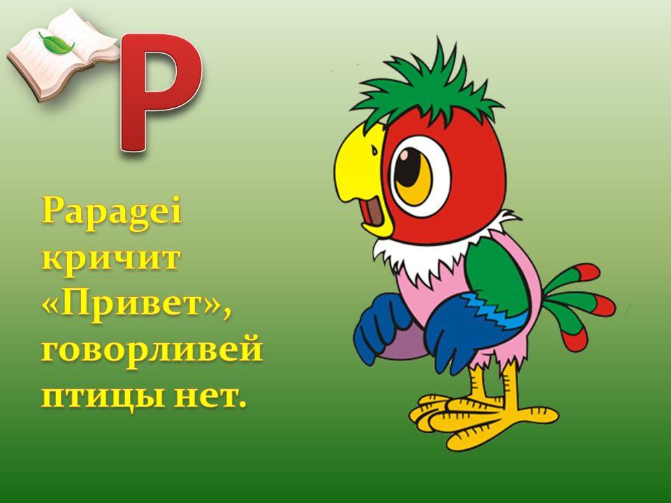 P Papagei кричит «Привет», говорливей птицы нет.