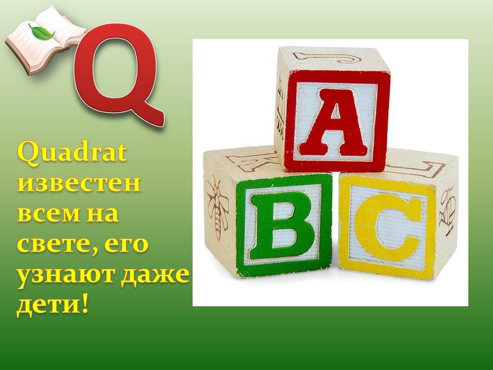 Q Quadrat известен всем на свете, его узнают даже дети!