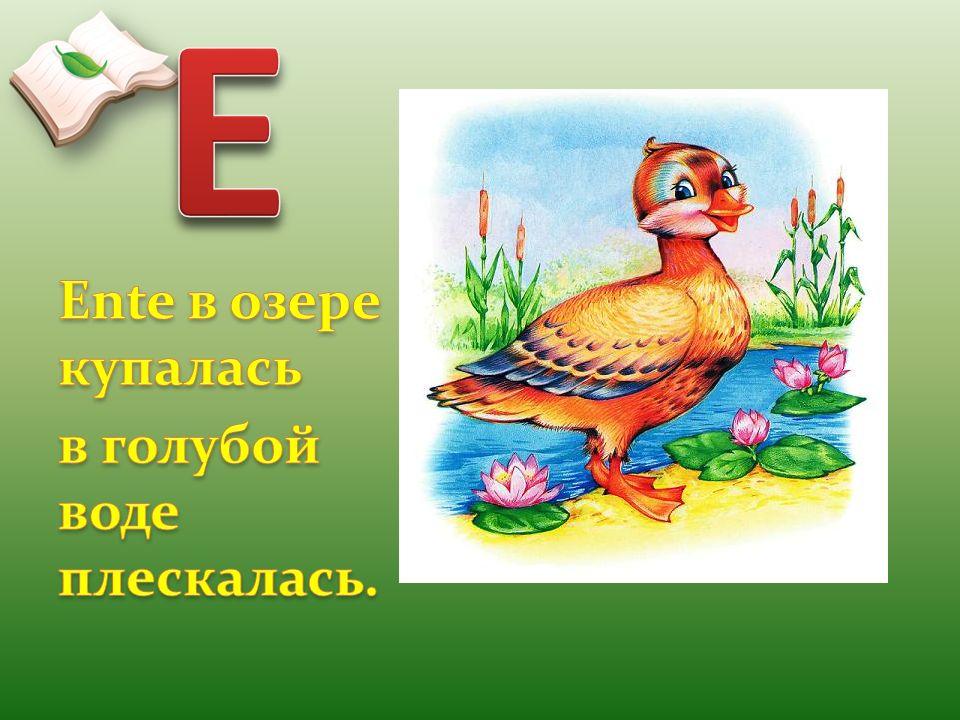 E Ente в озере купалась в голубой воде плескалась.
