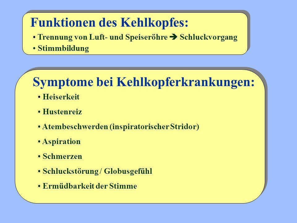Funktionen des Kehlkopfes: