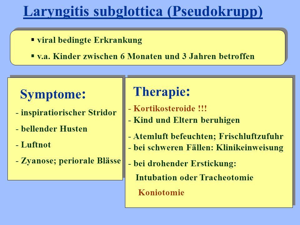 Laryngitis subglottica (Pseudokrupp)