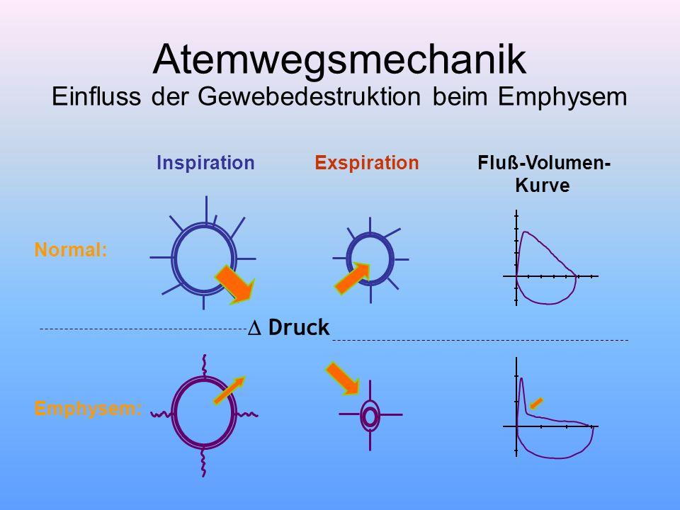 Atemwegsmechanik Einfluss der Gewebedestruktion beim Emphysem