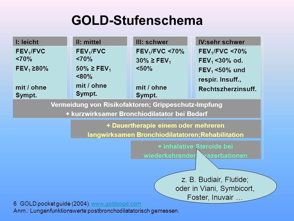 GOLD-Stufenschema z. B. Budiair, Flutide; oder in Viani, Symbicort,