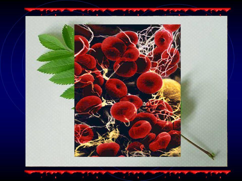 Farben, die sowohl aus organischen als auch anorganischen Komponenten bestehen.