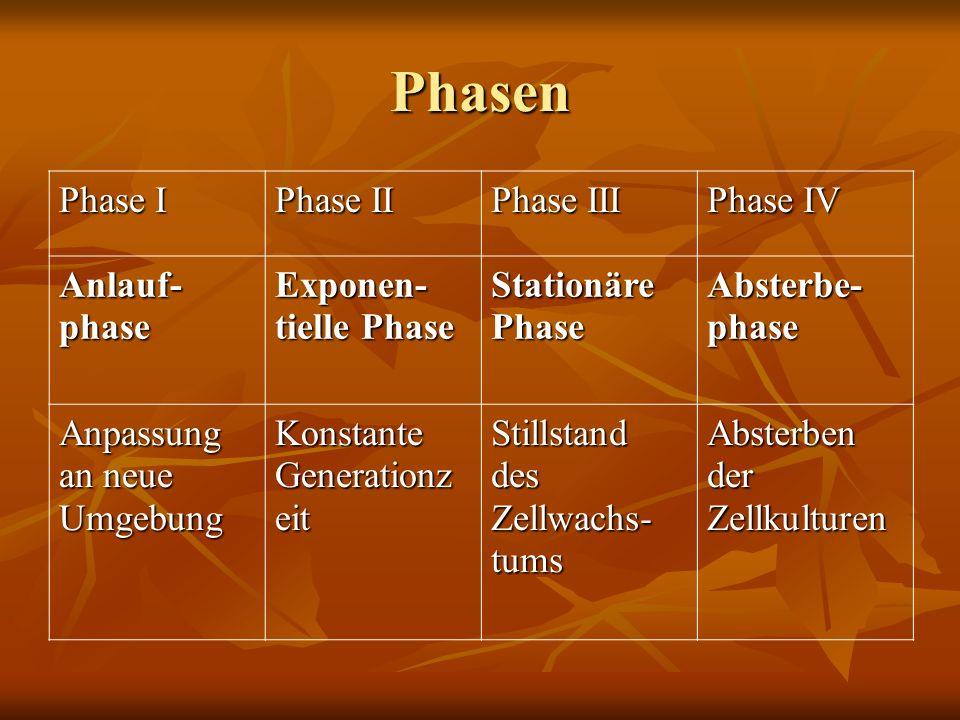 Phasen Phase I Phase II Phase III Phase IV Anlauf- phase