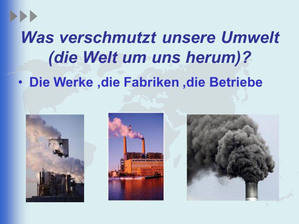 Was verschmutzt unsere Umwelt (die Welt um uns herum)