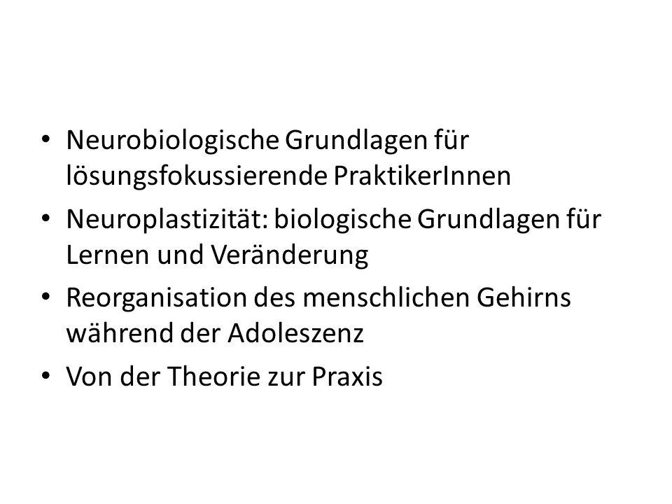 Neurobiologische Grundlagen für lösungsfokussierende PraktikerInnen