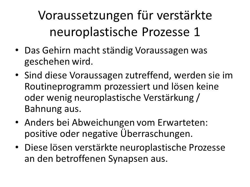 Voraussetzungen für verstärkte neuroplastische Prozesse 1