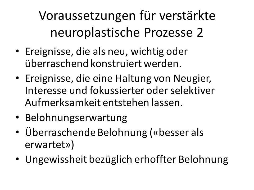 Voraussetzungen für verstärkte neuroplastische Prozesse 2