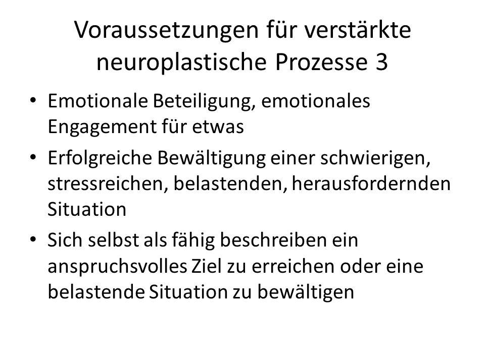 Voraussetzungen für verstärkte neuroplastische Prozesse 3