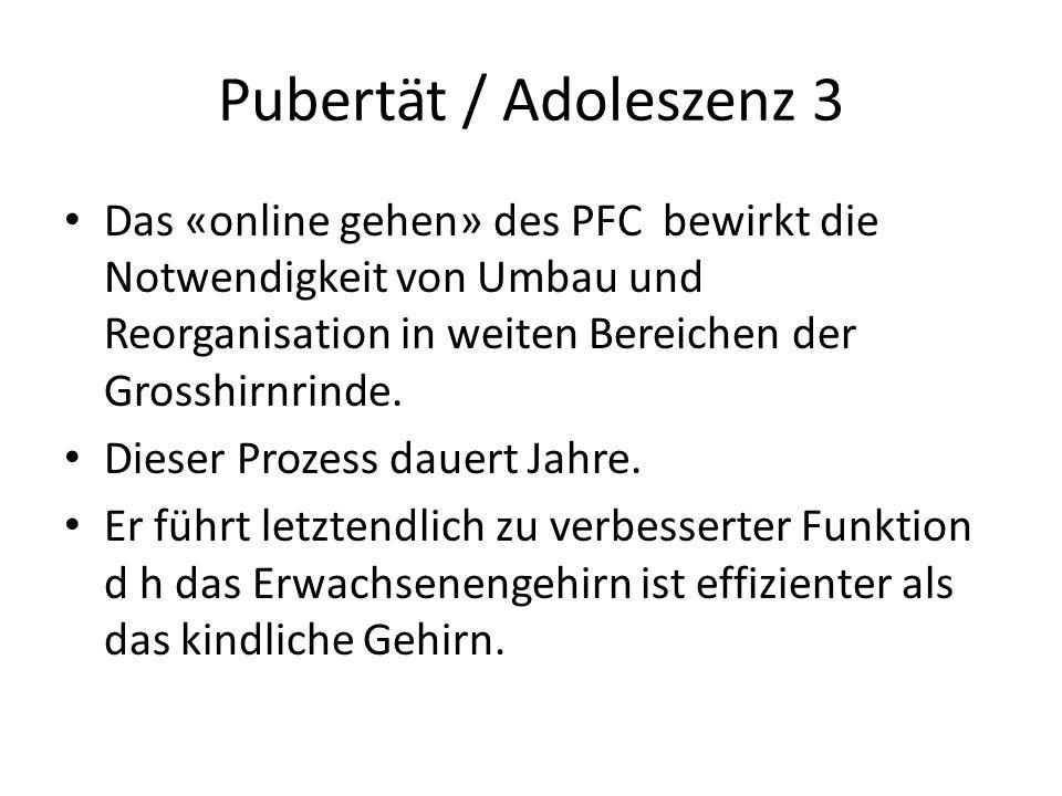 Pubertät / Adoleszenz 3 Das «online gehen» des PFC bewirkt die Notwendigkeit von Umbau und Reorganisation in weiten Bereichen der Grosshirnrinde.