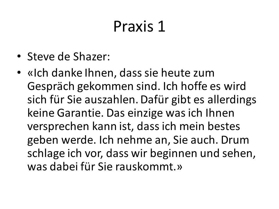 Praxis 1 Steve de Shazer: