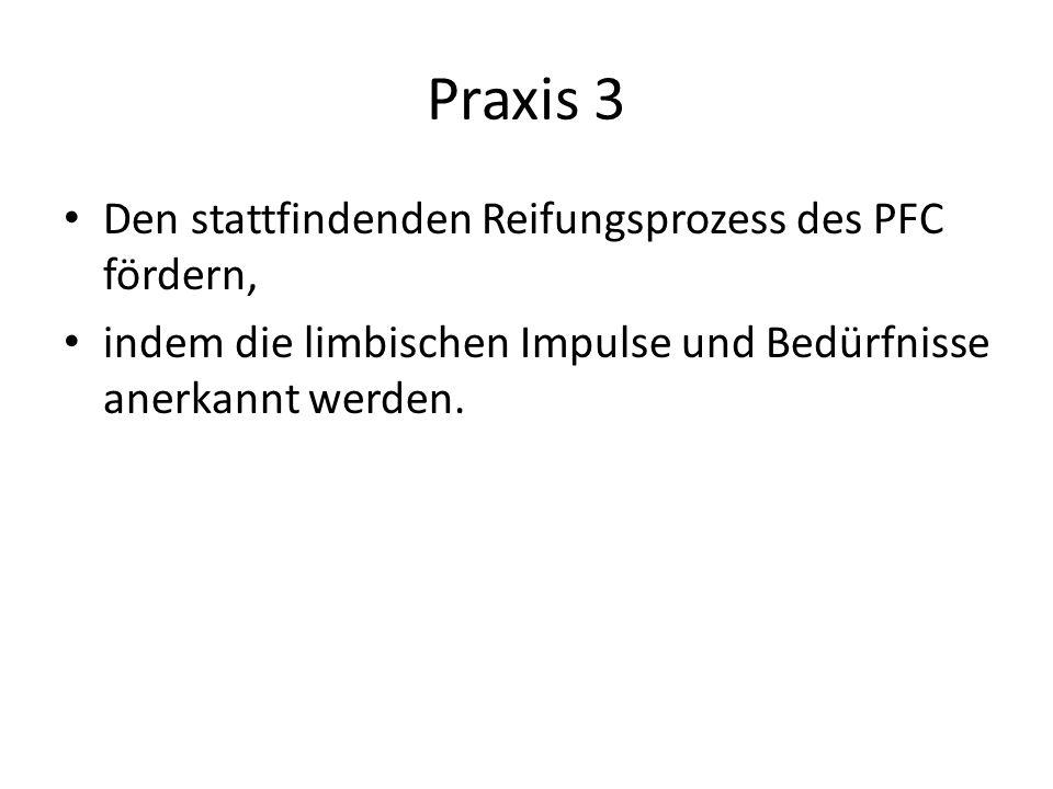 Praxis 3 Den stattfindenden Reifungsprozess des PFC fördern,
