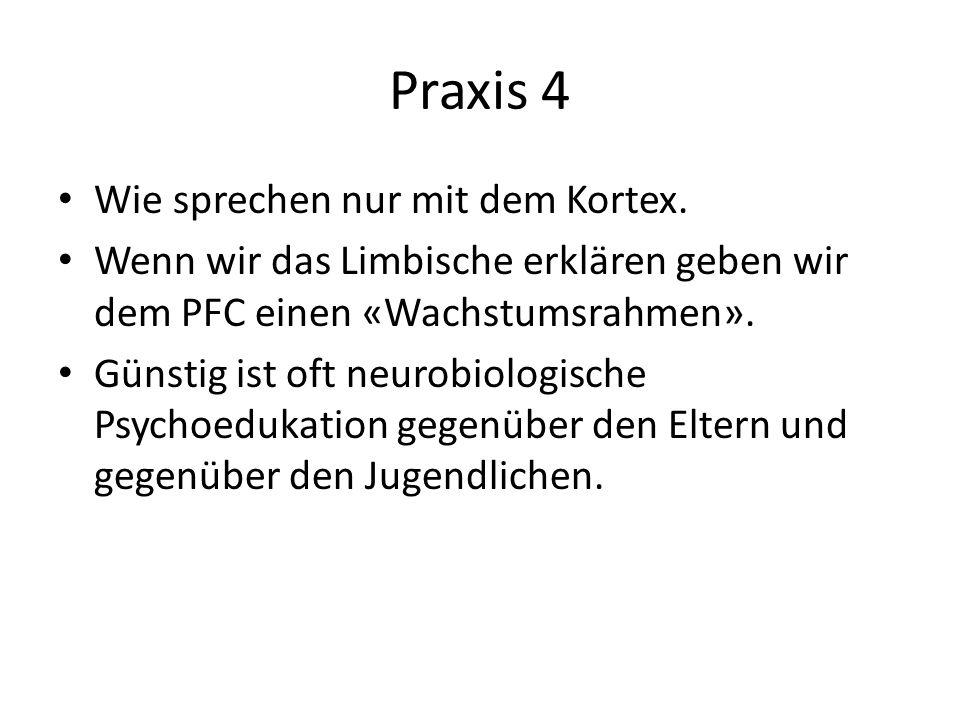 Praxis 4 Wie sprechen nur mit dem Kortex.