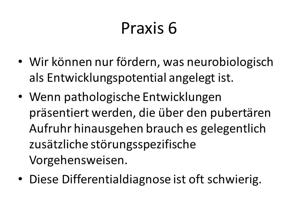 Praxis 6 Wir können nur fördern, was neurobiologisch als Entwicklungspotential angelegt ist.
