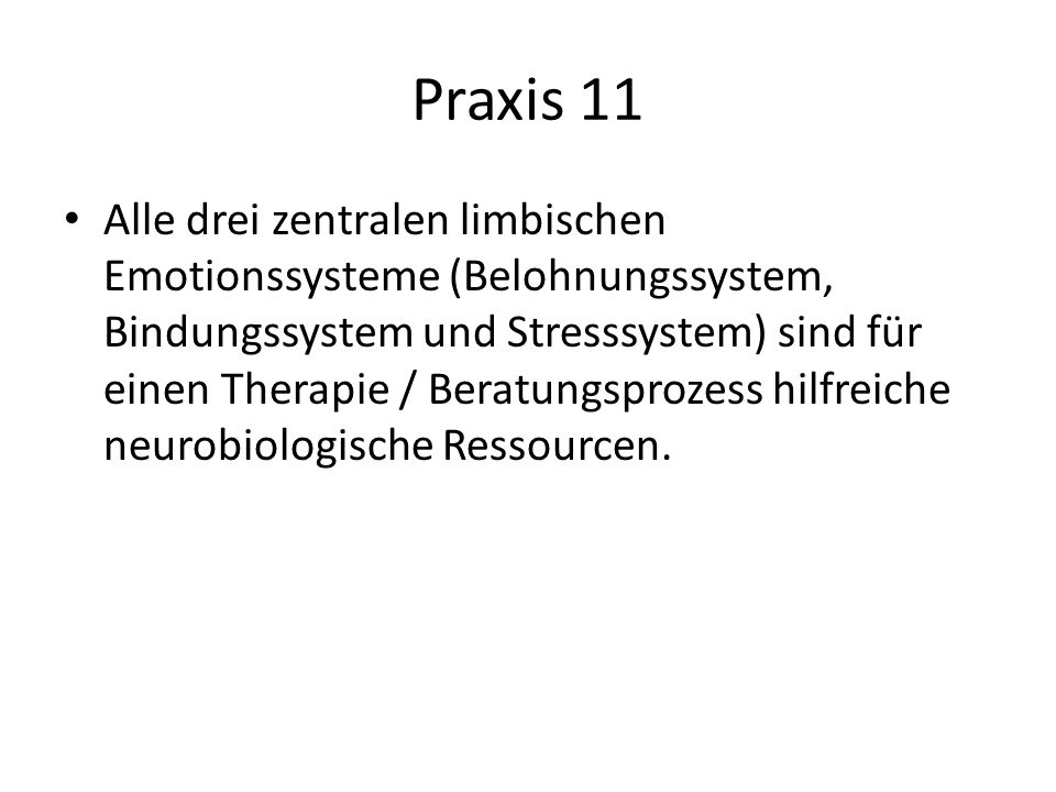Praxis 11