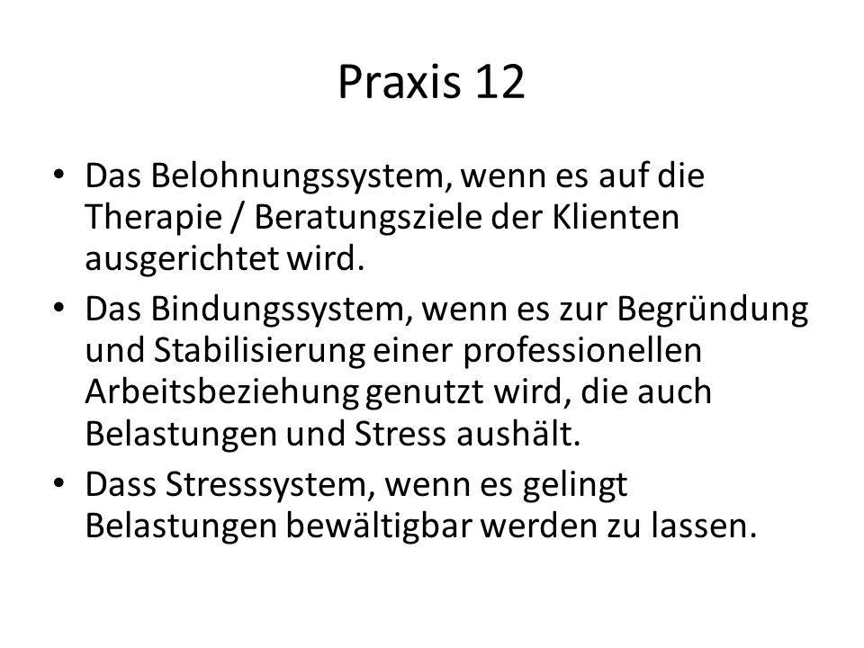 Praxis 12 Das Belohnungssystem, wenn es auf die Therapie / Beratungsziele der Klienten ausgerichtet wird.