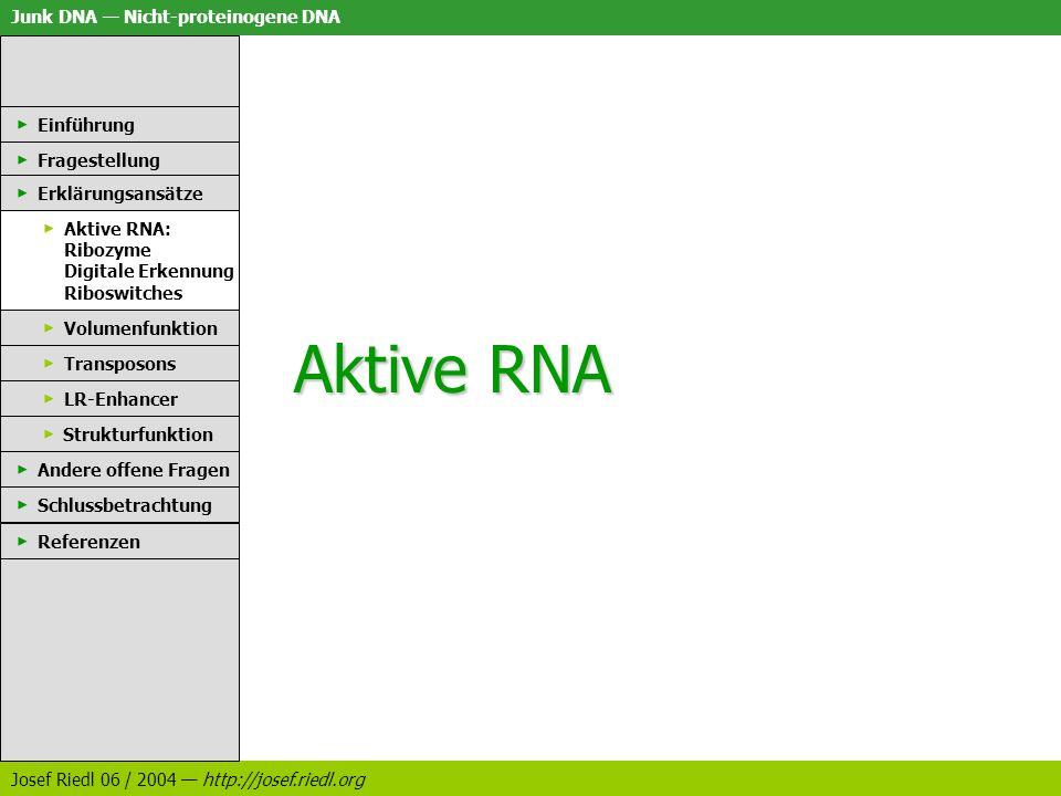 Aktive RNA Einführung Fragestellung Erklärungsansätze