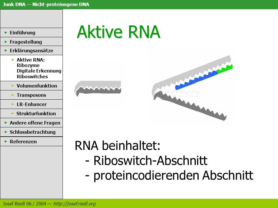 Aktive RNA Einführung. Fragestellung. Erklärungsansätze. Aktive RNA: Ribozyme Digitale Erkennung Riboswitches.