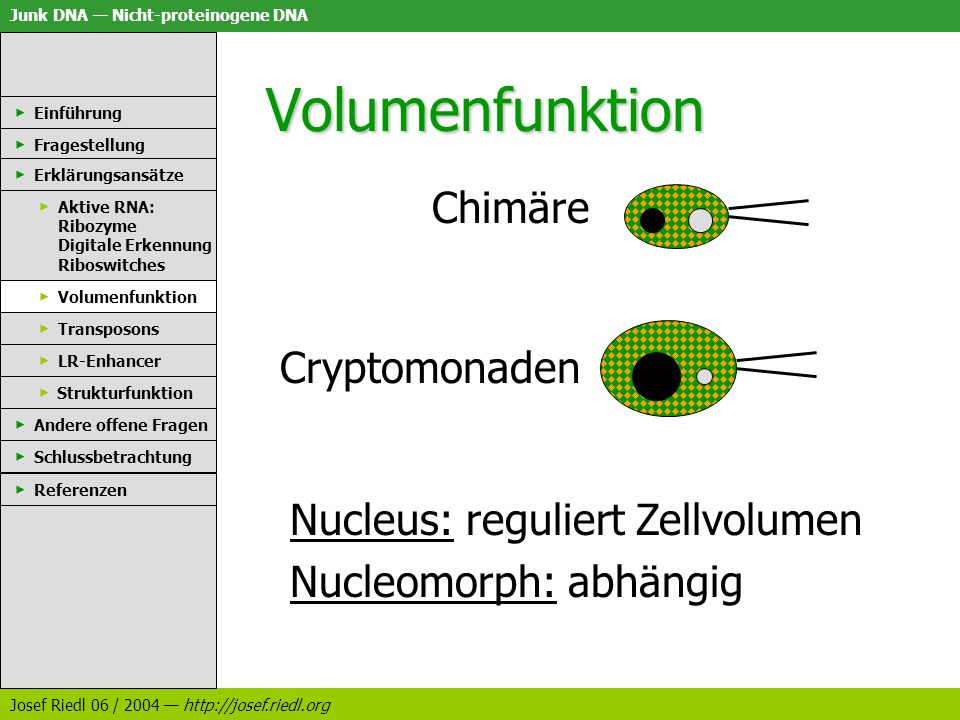 Volumenfunktion Chimäre Cryptomonaden Nucleus: reguliert Zellvolumen