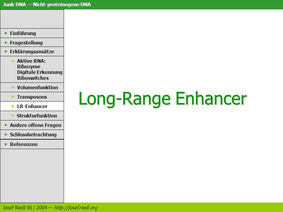 Long-Range Enhancer Einführung Fragestellung Erklärungsansätze