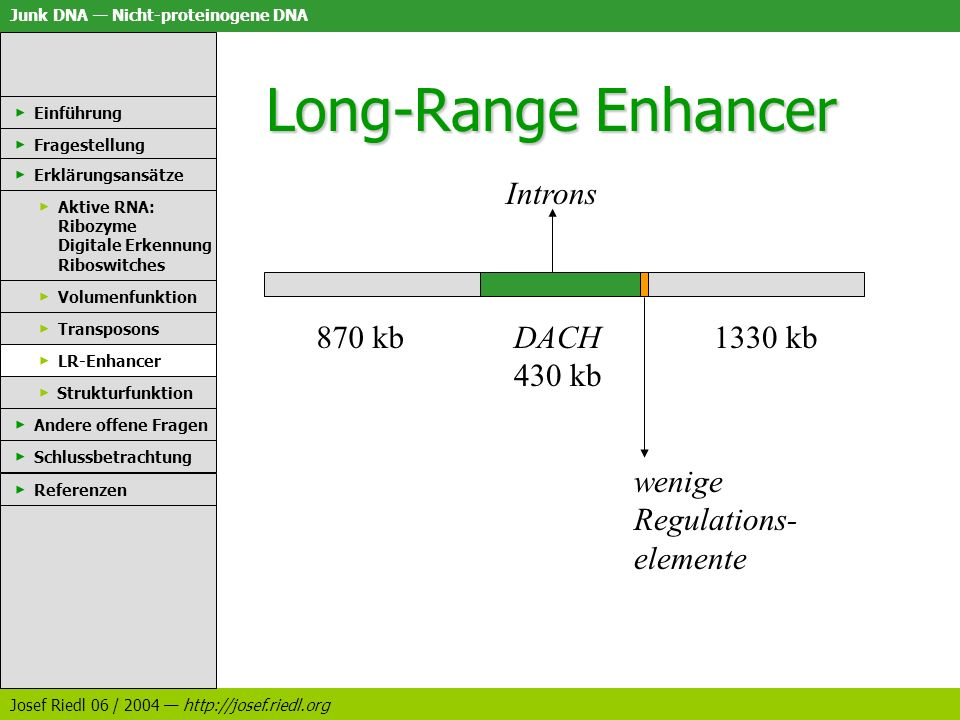 Long-Range Enhancer Introns 870 kb DACH 430 kb 1330 kb