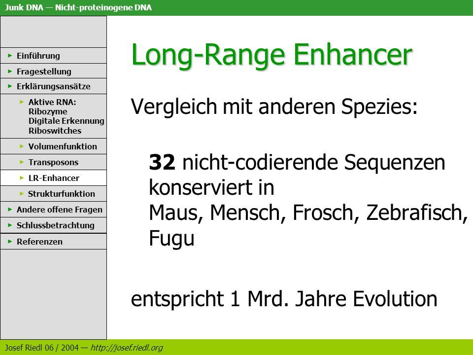 Long-Range Enhancer Vergleich mit anderen Spezies: