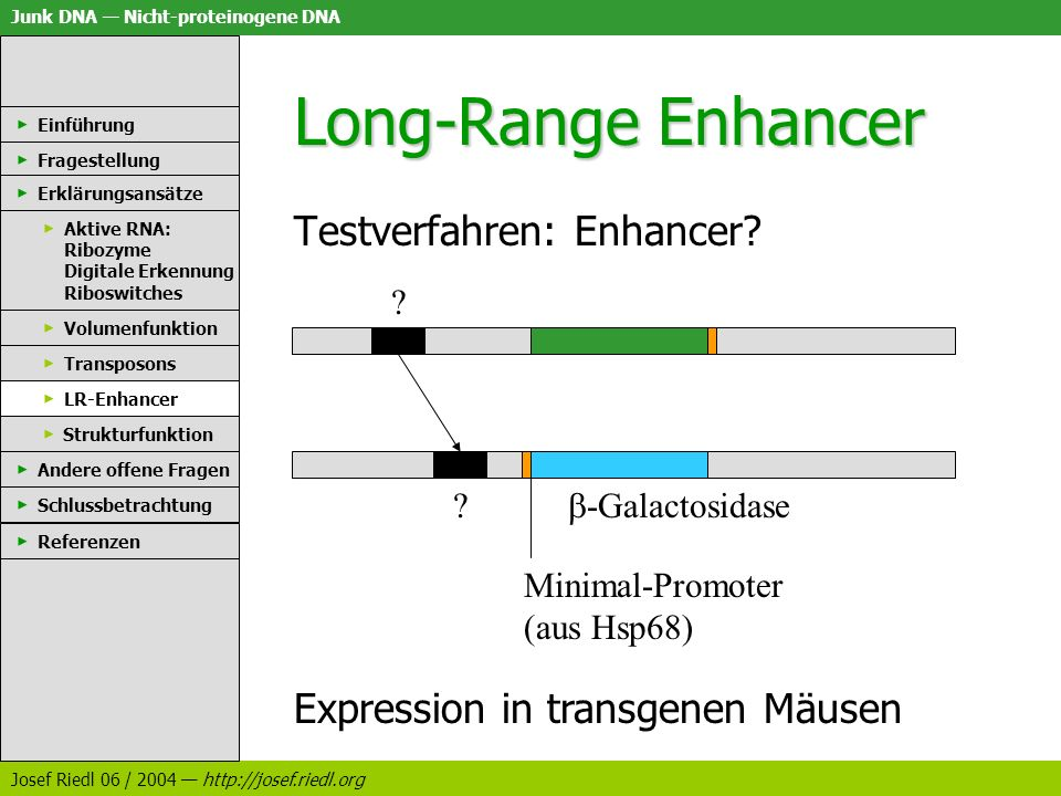 Long-Range Enhancer Testverfahren: Enhancer