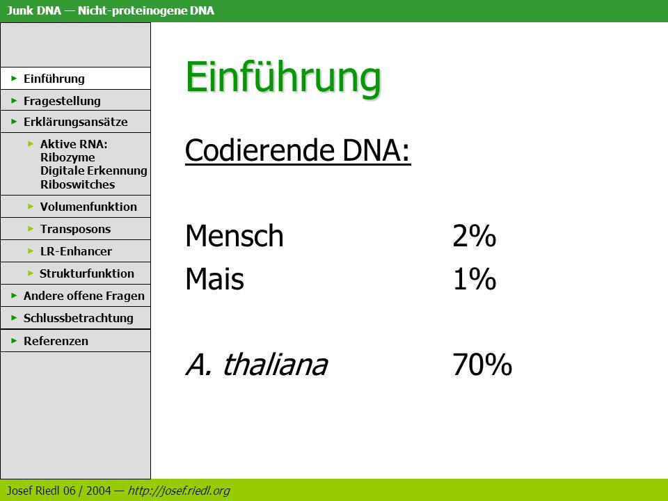 Einführung Codierende DNA: Mensch 2% Mais 1% A. thaliana 70%